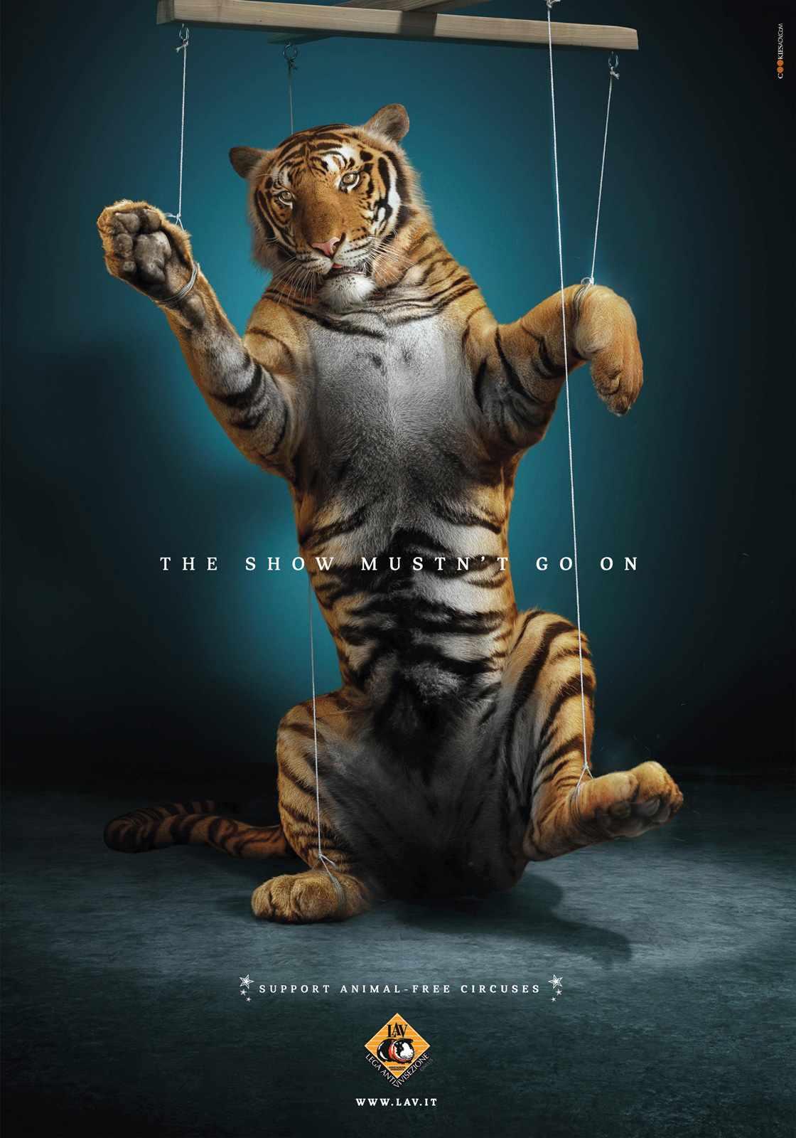 Ad campaigns against animal cruelty | constancegilfedder